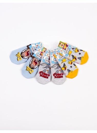 Looney Tunes  Lisanslı 6 Çift Patik Çocuk Çorap 18223 Gri